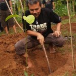 Pekerti's director planted a tree on WFTD 2011